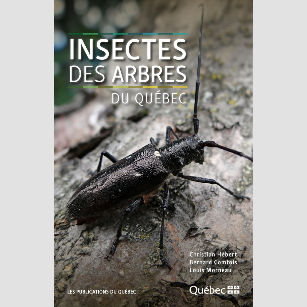 insectes des arbres du qu bec faune librairies boyer. Black Bedroom Furniture Sets. Home Design Ideas